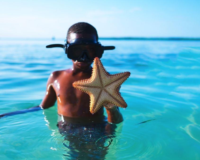 Bambino con stella marina in acqua
